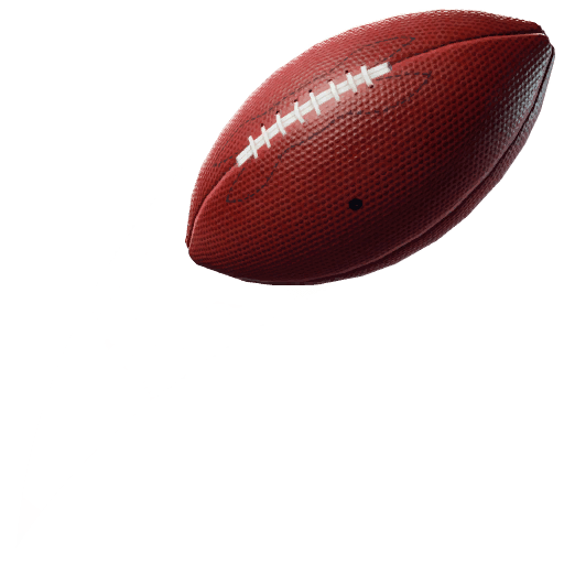 Pigskin Toy icon