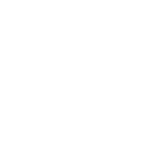 Sharpshooter Emote icon